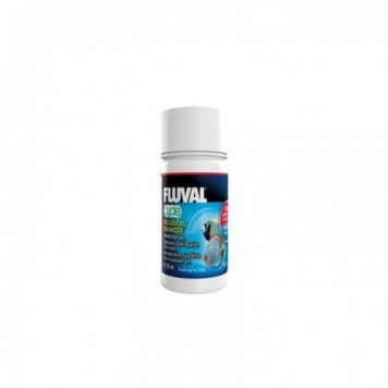CYCLE BACTERIAS FLUVAL